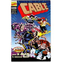 CABLE N°13