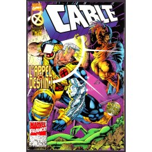 CABLE N°16